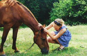 Meisje (13) bestelt paard online en laat 'm bezorgen bij haar oma