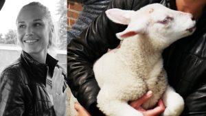 Het lammetje van boer Tom heeft honger: ze begint aan het jasje van Kim