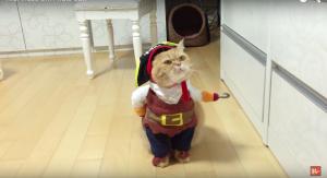 Ho Ho Ho: hier is Piratenpoes