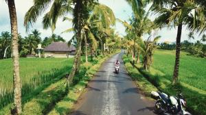 In deze adembenemend mooie film zie je hoe het dagelijks leven op Bali er écht aan toegaat