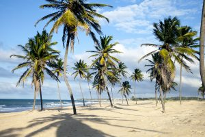 7 x waarom je nú een strandvakantie naar het Braziliaanse Cumbuco wil boeken