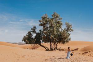 Hannah (29) reist werkend de wereld rond: 'Nederland voelt nu als vakantieland'