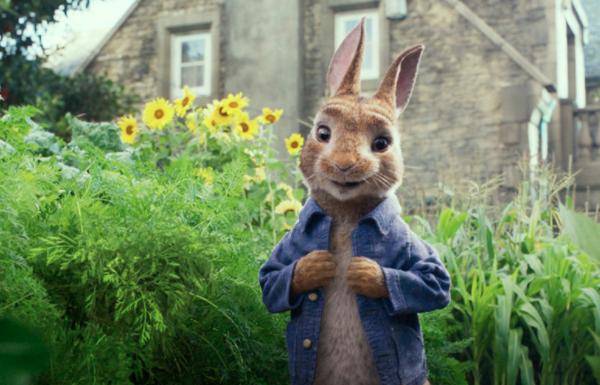 Thumbnail voor Waarom duizenden ouders de kinderfilm 'Peter Rabbit' boycotten