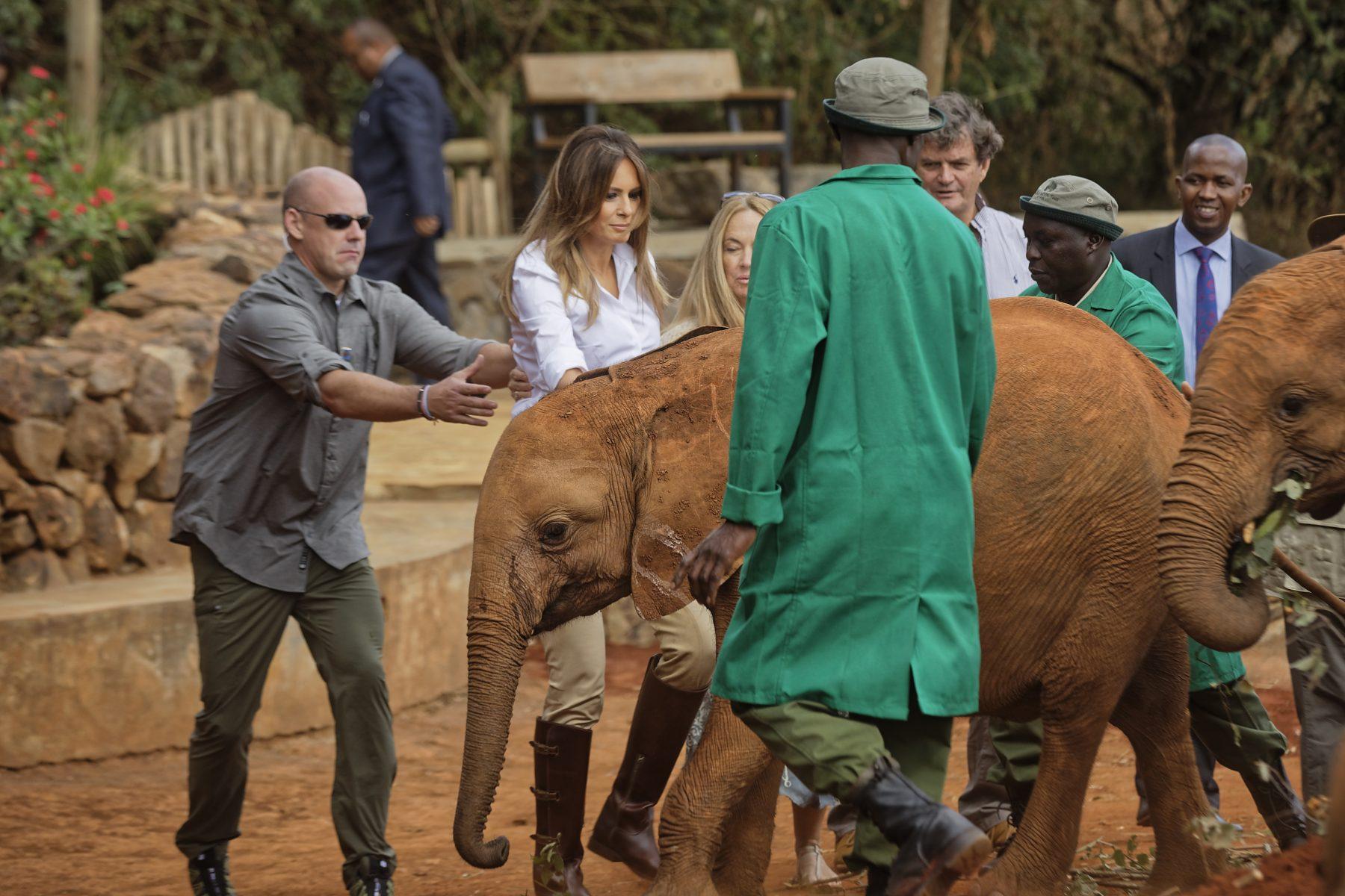 Melania Trump krijgt stoot van olifant (en die beelden vliegen - uiteraard - het internet over)