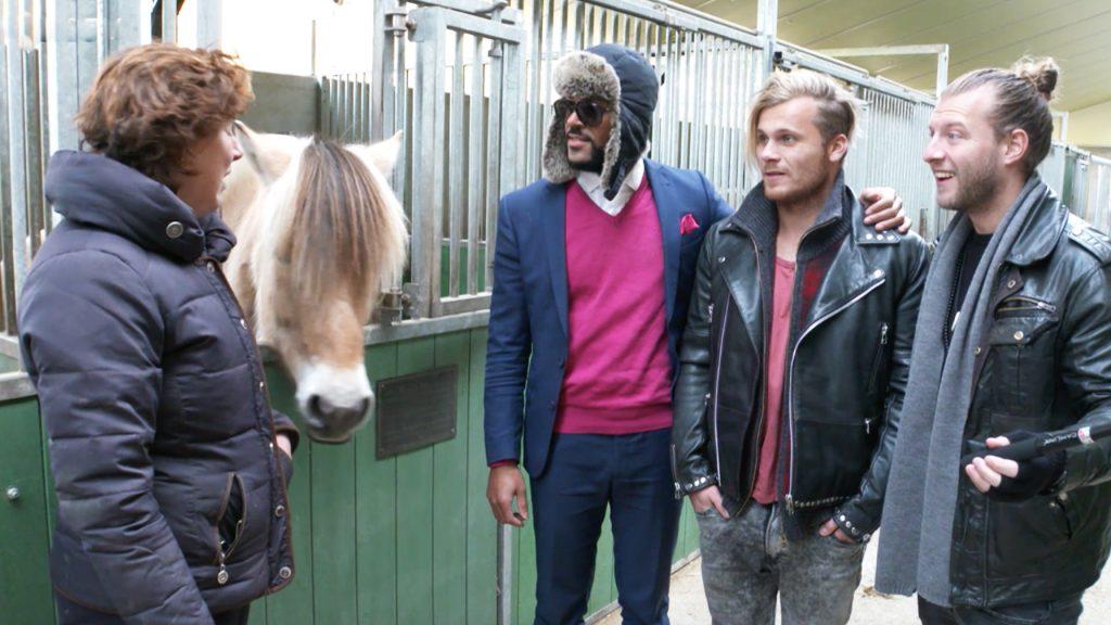 Onze jongens worden voor één dag paardenmeisjes. 'Doodeng, die beesten.'
