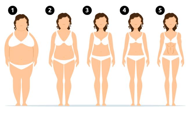 Lichaamstypen vrouwen