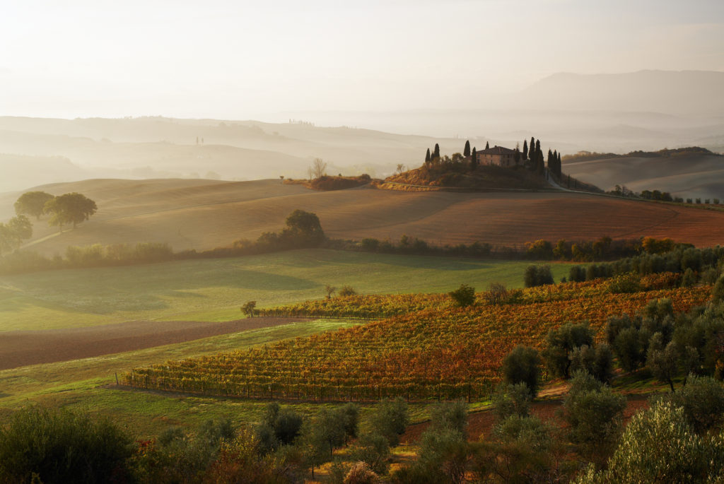 View across Tuscan landscape to farmhouse and vineyards at sunrise, Val d'Orcia.