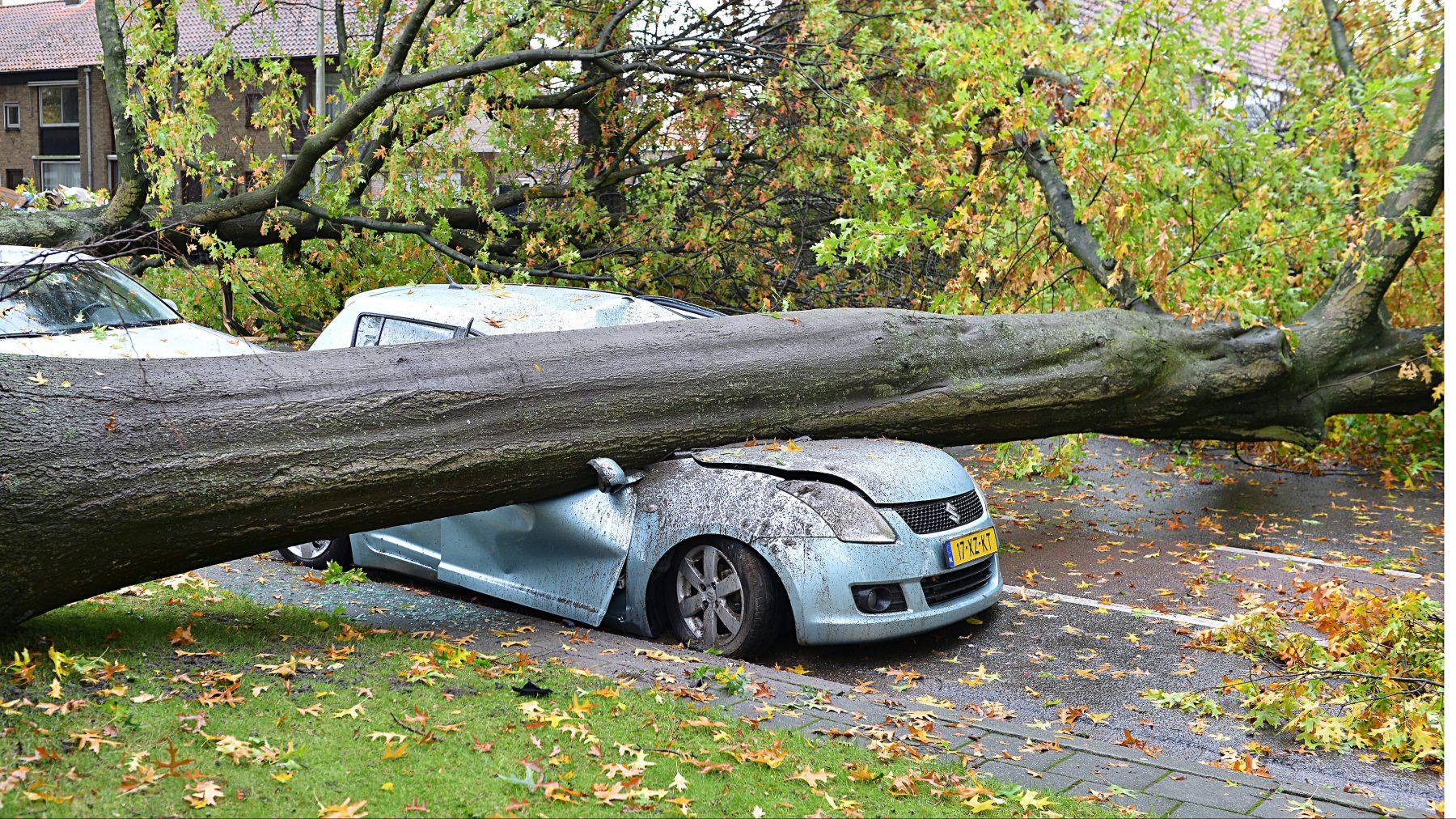 schade door storm in zuiden van Nederland
