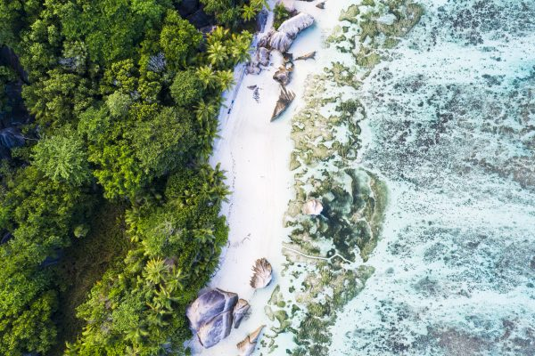 Sterrenbeeld Anse Source d'Argent beach