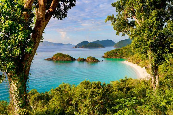 Sterrenbeeld Trunk Bay, St. John, US Virgin Islands in the Caribbean