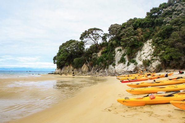 Sterrenbeeld Row of yellow kayaks on the beach, Mosquito Bay, Abel Tasman National Park, New Zealand