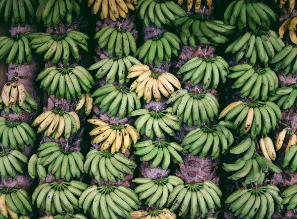 Bananenbar SUNT opent voor één dag in Amsterdam