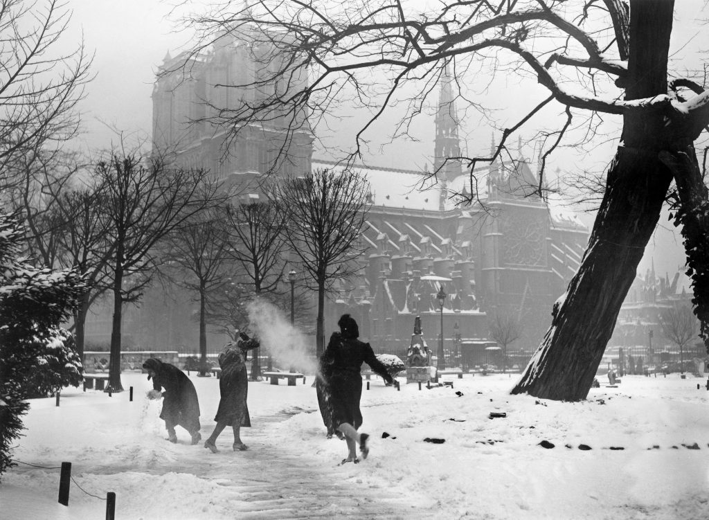 Snowball Fight In Front Of Notre Dame