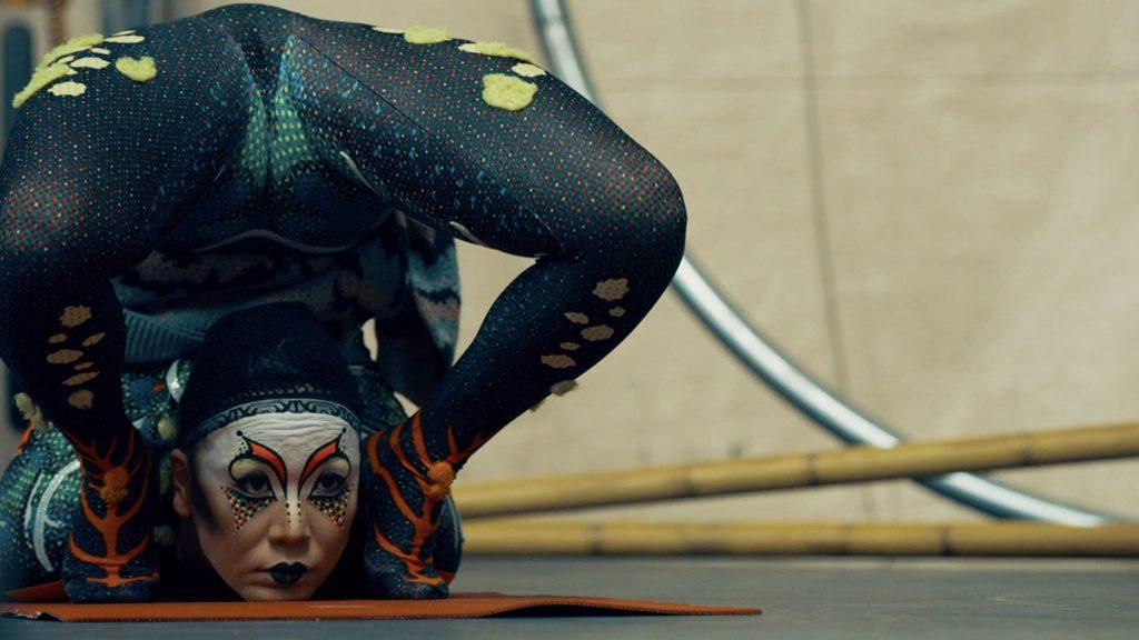 02A-mijn-bijzondere-leven-cirque-du-soleil