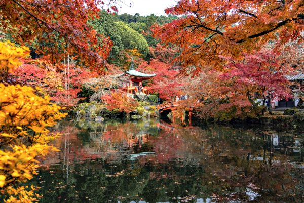 Red Maple Tree Garden and Bentendo Hall of Daigoji Temple in Autumn, Kyoto, Japan