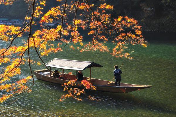 Tourist Boat along Hozugawa River in Autumn, Arashiyama, Kyoto, Japan