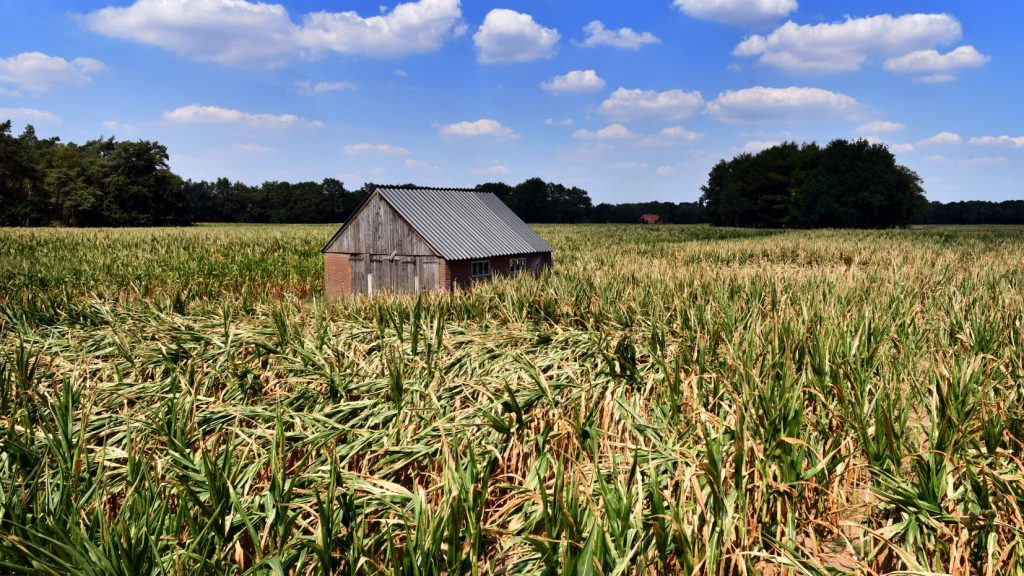 droogte-landbouw-klimaatpanel