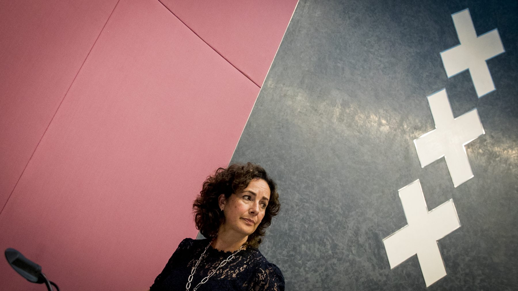 femke-halsema-gesteund-door-politici-journalisten