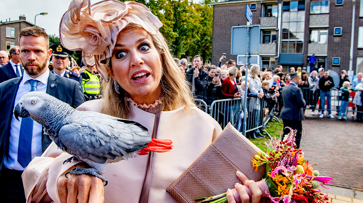 Koningspaar bezoekt Zuidwest-Drenthe papegaai2