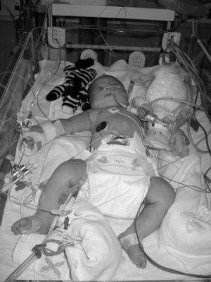 Kaydee euthanasie yvonne kinderen