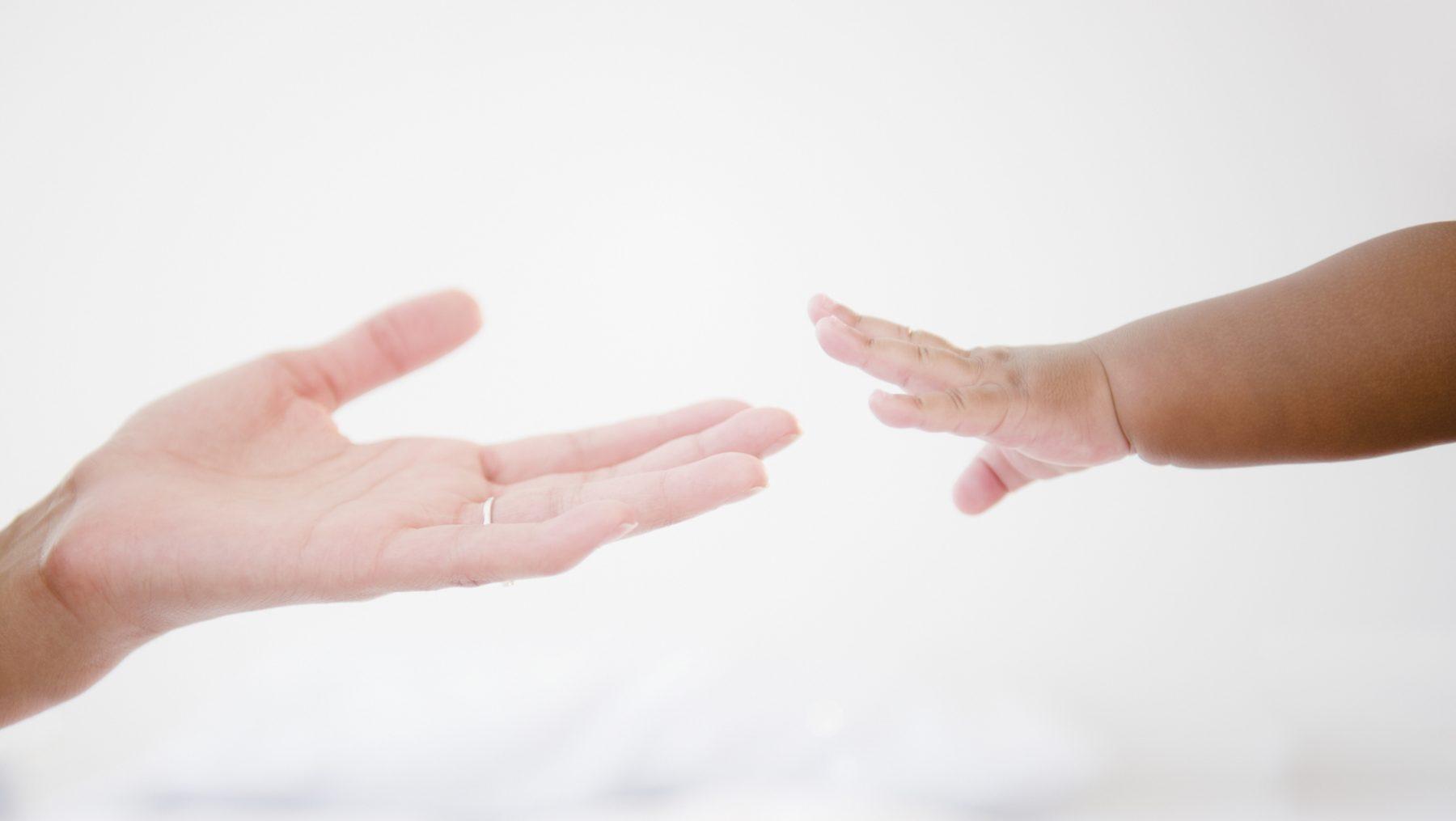 Kaydee euthanasie yvonne velthuis