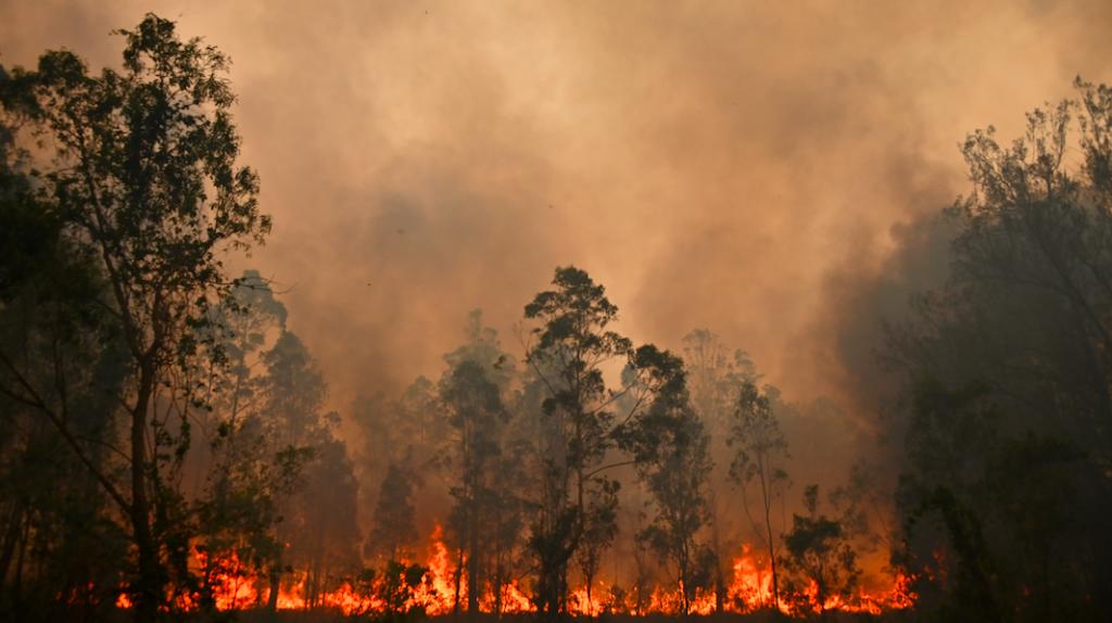 bosbranden australie noodtoestand