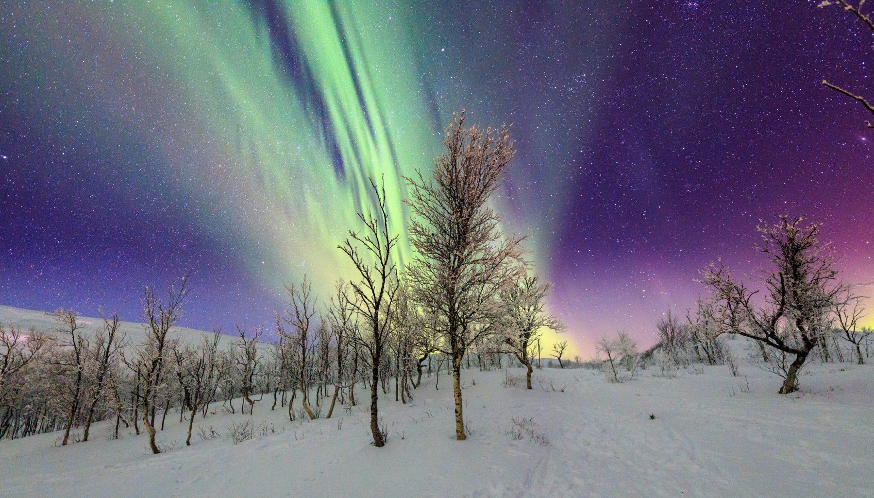 Deze vakantie in Lapland zit vól winters avontuur (en je kunt er nu met korting heen)