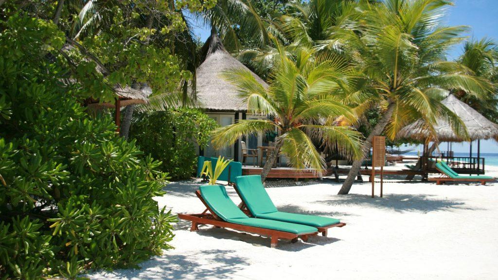 We droomden dit jaar massaal van een vakantie naar de Malediven