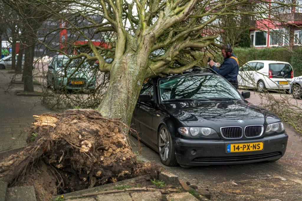 Veel schademeldingen door storm Ciara bij verzekeraar en Rijkswaterstaat