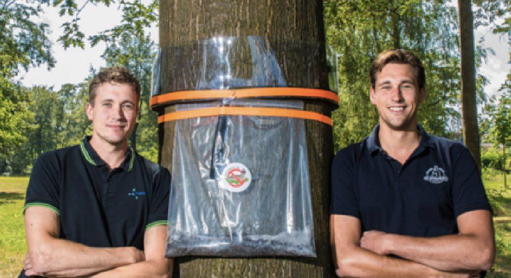 rupsenval broers bij boom