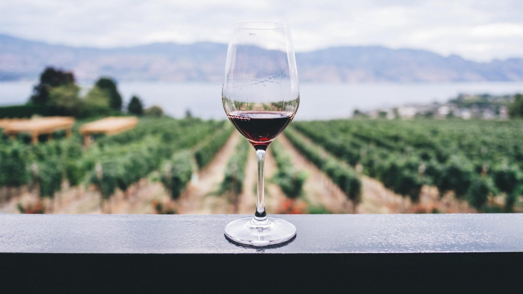 Nederlanders zuipschuiten? 41 procent van de volwassenen drinkt niet tot 1 alcohol glas per dag