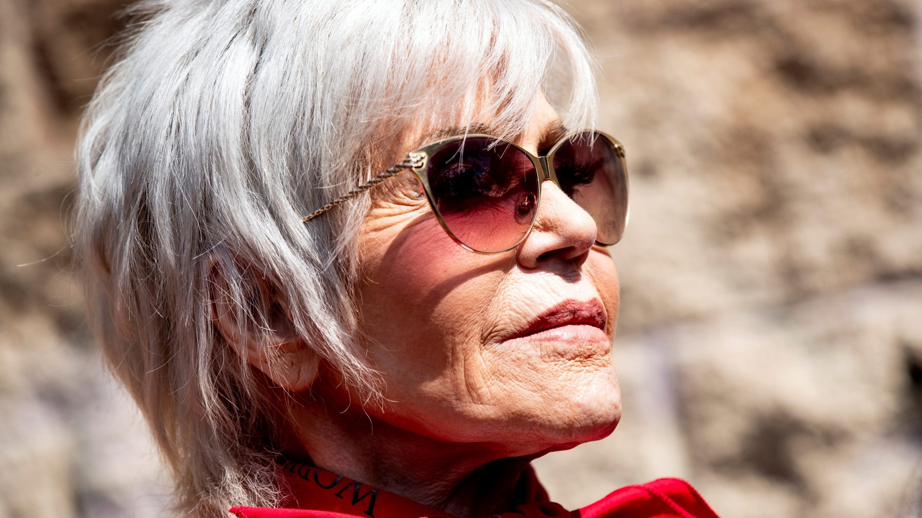Jane Fonda online activist