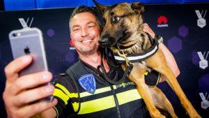 Thumbnail voor Politiehond Bumper is terug als Instagram-ster, maar laat de boeven links liggen