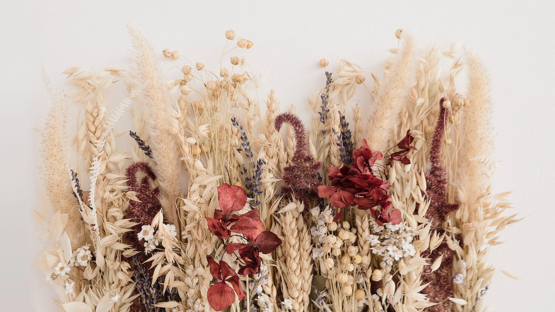 Kurkdroog maar prachtig: droogbloemen zijn een ware interieurhit