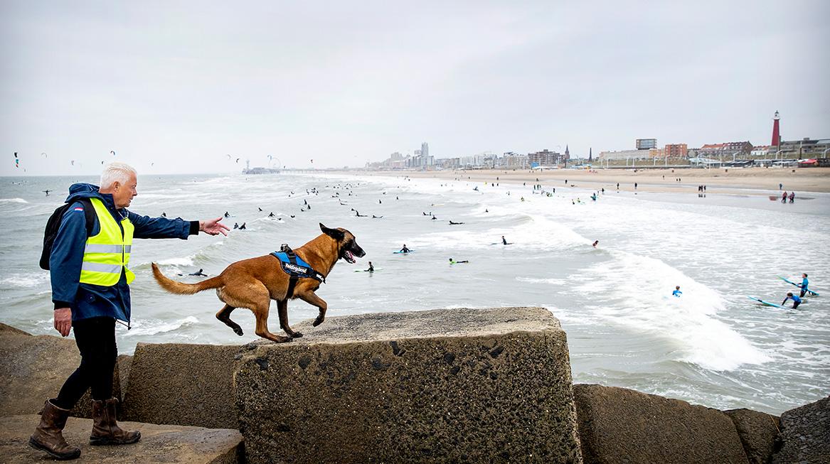 zoektocht vermiste surfer scheveningen1
