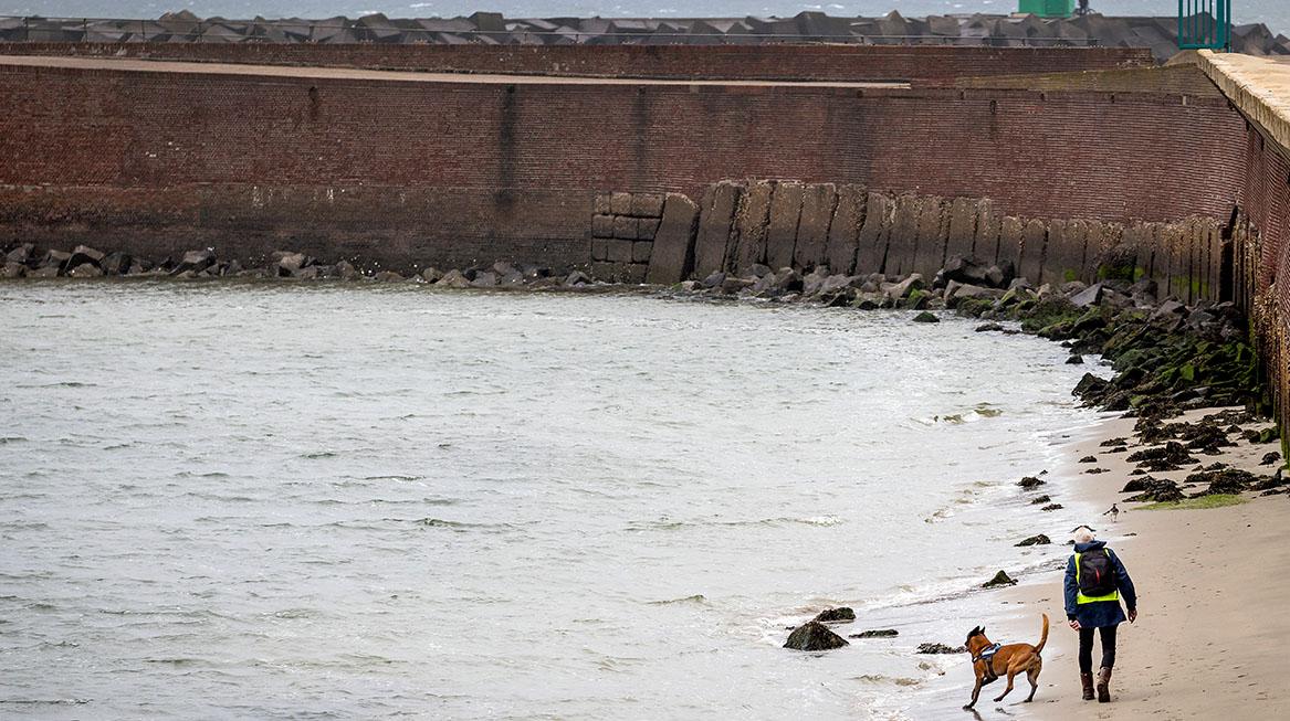 zoektocht vermiste surfer scheveningen
