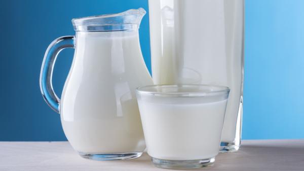 melk zuivel