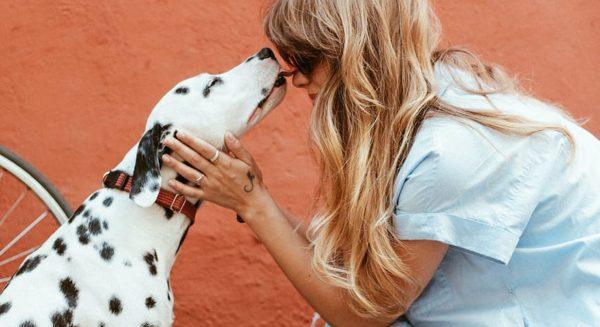 Op het huisdier van de buurvrouw passen: 9 x jullie rampzaligste verhalen