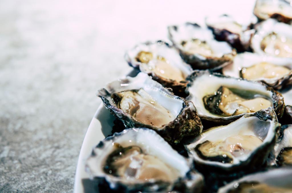 Troebel water op Texel door massaal klaarkomende oesters