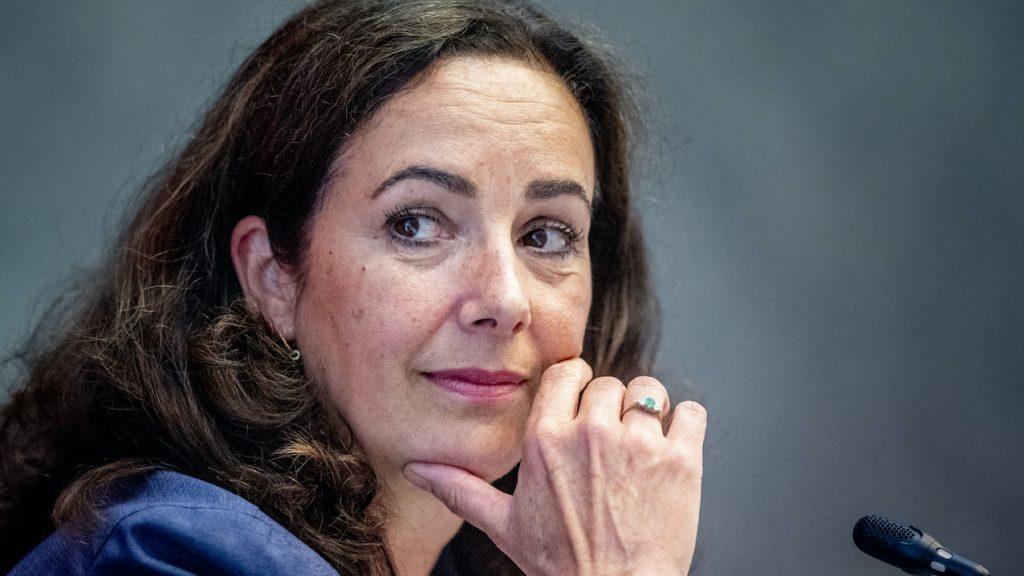 Femke Halsema spreekt medeleven uit met familie en vrienden van Bas van Wijk
