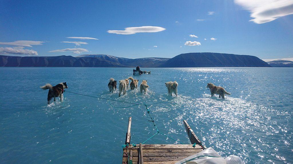 In 5500 jaar nog nooit zo weinig ijs in Beringzee