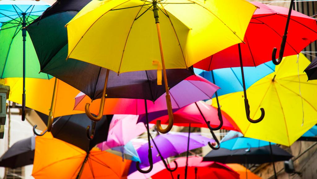 Regen, kou en coupe wind: het wordt nu toch écht herfst
