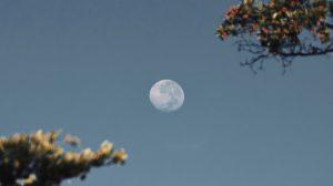 Maanstanden vs maandstonden- hoe de maan verband kan houden met je menstruatie