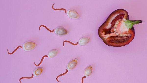 anticonceptie bijbel
