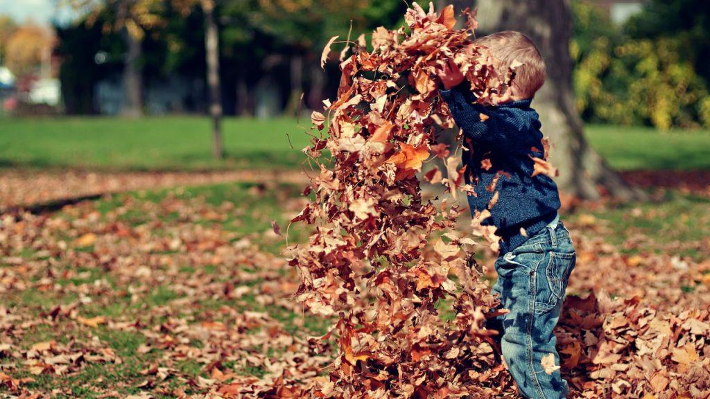 Geen grap: dit weekend wordt er mooi en zonnig herfstweer verwacht