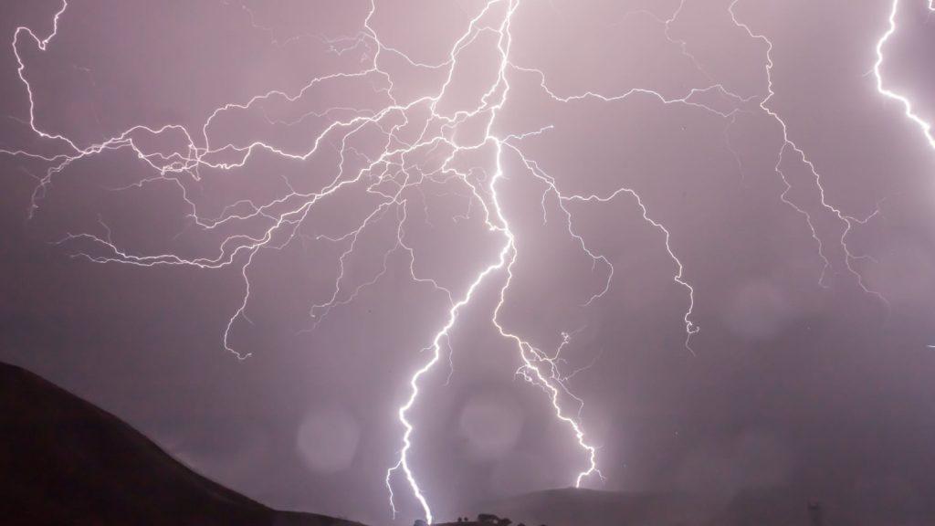 Boom in Rijswijk explodeert door bliksem en zorgt voor flinke ravage