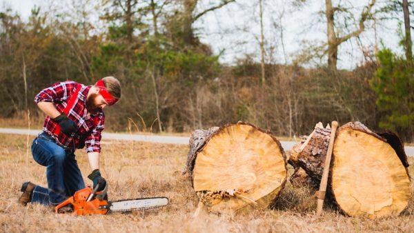Man zaagt boom bomen om Unsplash