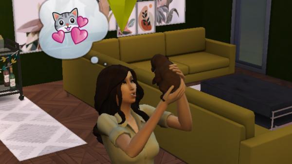 'The Sims? Dat is de perfecte doe-het-zelf-therapie voor deze coronawinter'