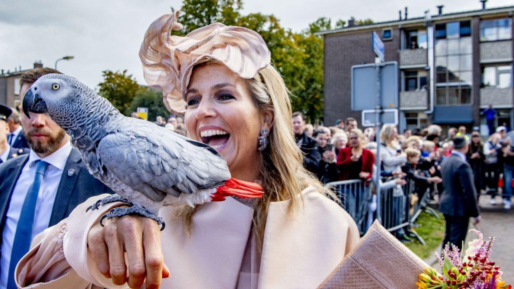 papegaai Knaken binnenharken met baan bij koningshuis: '24/7 oproepbaar en papegaai-sitten'