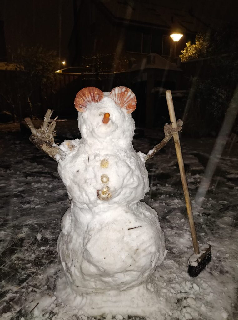 Sneeuwpop Maud